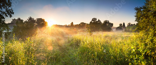 landscape panorama with sunrise and forest and meadow