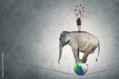 Caucasian businesswoman with balls and elephant Fototapete