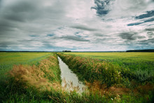 Countryside Landscape With Ameliorative Canal Ditch In Green Agricultural Field Meadow.