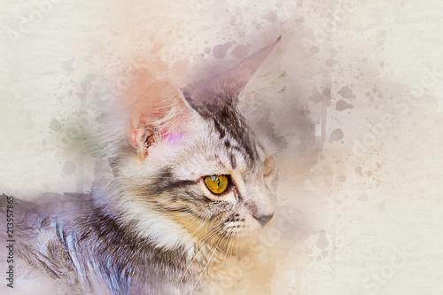 Portret akwarela z pręgowany kot. kolor farby sztuka na płótnie dla tła