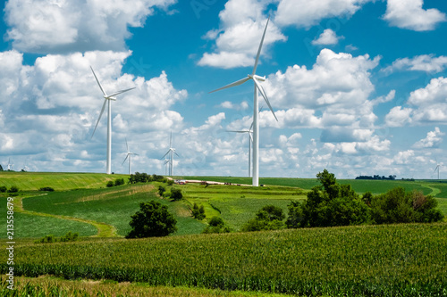 Fotografie, Obraz  Turbines on rolling hills