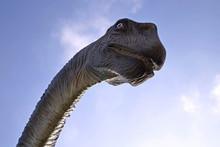 Dinosaur Against The Blue Sky .