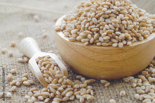 Leinwand Poster pearls barley grain seed on background