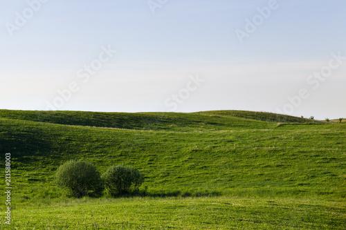Foto op Aluminium Blauwe hemel landscape at dawn