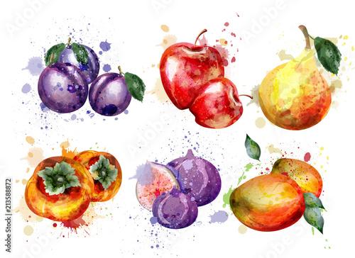 Canvas Print Watercolor fruits set Vector