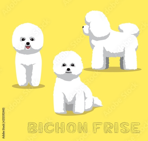 Canvas Print Dog Bichon Frise Cartoon Vector Illustration