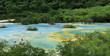 Natural blue pool ,Huanglong, Sichuan,China