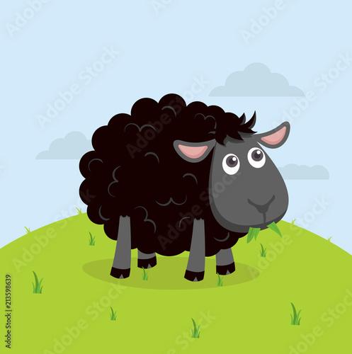 Fototapeta premium Śliczne czarne owce jedzą trawę kreskówki