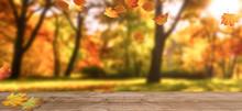 Herbstbäume Mit Fallendem Laub
