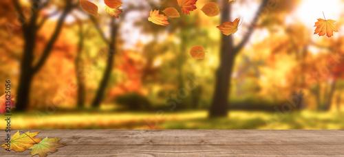 Plakat Jesienne drzewa z spadającymi liśćmi