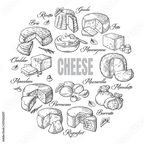 Fototapeta circular background of different cheese top view Vector illustration obraz