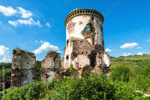 Foto op Aluminium Oude gebouw Ruins of the Chervonogorod castle. Zalishchiki, Ukraine