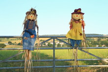 Cute Straw Filled Boy And Girl Scarecrows On A Farmland In East Devon