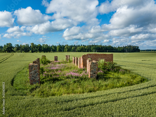 Foto op Canvas Bleke violet drone image. aerial view of rural area with green cultivated fields and old abandoned building ruins in the middle