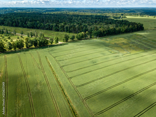 Poster Pistache drone image. aerial view of rural area with green cultivated fields