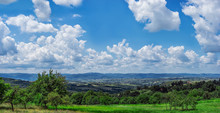 Beautiful Clear Landscape With Green Plants And Cloudy Blue Sunshine Sky