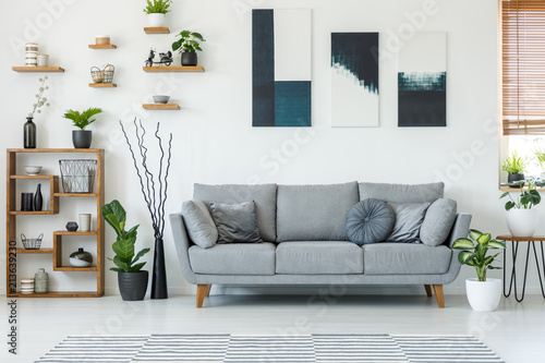 Fotografía  Real photo of an elegant living room interior with a comfy couch, paintings and