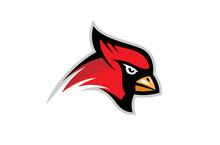 Cardinal Bird Logo Design Illu...