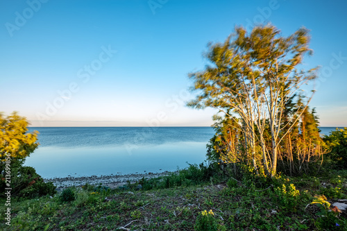 Foto op Aluminium Blauw dramatic sunrise over the baltic sea with rocky beach and trees on the shore