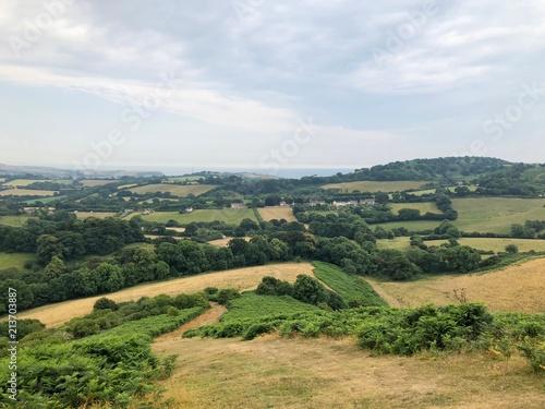 Foto op Aluminium Blauwe hemel Dorset Landscape Scenery from Colmers Hill