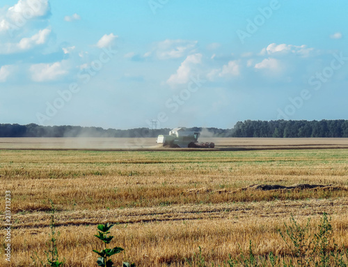 Spoed Foto op Canvas Platteland Harvester removes wheat on the field