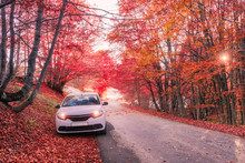 The Car Is Parked In The Autumn Forest. October 31, 2015.