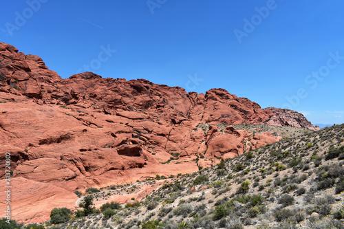 Tuinposter Zalm Red Rock Canyon