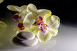 flat stones on a white glass on the background of yellow orchids