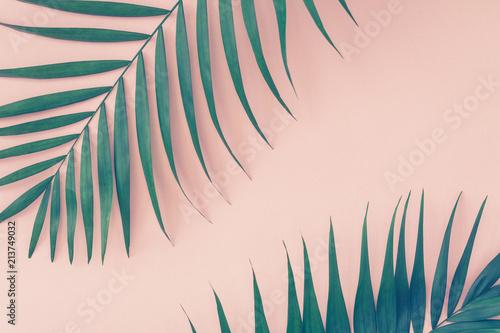 Liście palmowe na różowym tle. Trend vintage stonowany.