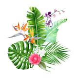 Watercolor tropical bouquet - 213752065