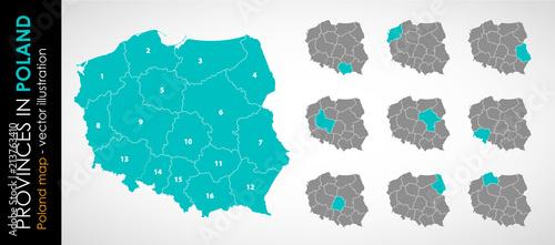 Fototapeta Wektorowa mapa województw w Polsce - KOLOR  obraz