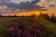 canvas print picture - Sonnenuntergang auf dem Schneekopf im Thüringer Wald