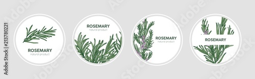 Cuadros en Lienzo Collection of round labels decorated with rosemary sprigs