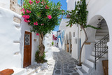 Fototapeta Uliczki - Traditionelle weiße Gasse mit bunten Oleander Blumen und farbigen Türen auf den Kykladen in Parikia, Paros, im Sommer, Griechenland