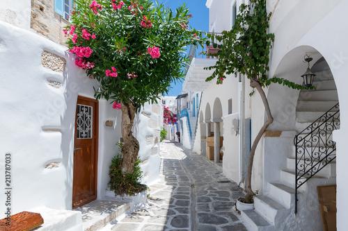 Poster Smal steegje Traditionelle weiße Gasse mit bunten Oleander Blumen und farbigen Türen auf den Kykladen in Parikia, Paros, im Sommer, Griechenland