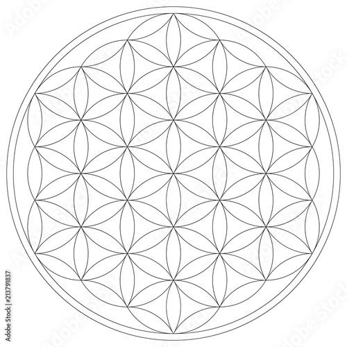 Geometrical figure. Sacred Geometry Flower of Life vector illustration Fototapete