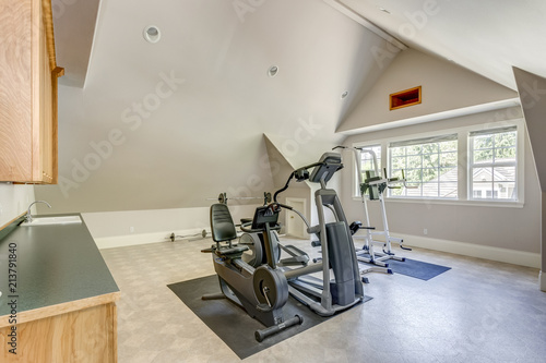 Well appointed home gym with vaulted ceiling Canvas Print