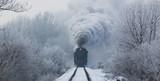 lokomotywa parowa z chmurami pary w zimie, widok z przodu, Słowacja - 213792626