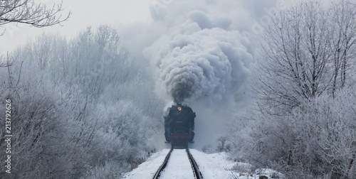 Tuinposter Spoorlijn steam locomotive with steam clouds in winter, front view, Slovakia
