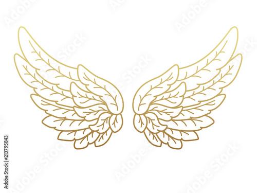 Fényképezés  A pair of angel wings, wide open with golden metallic effect