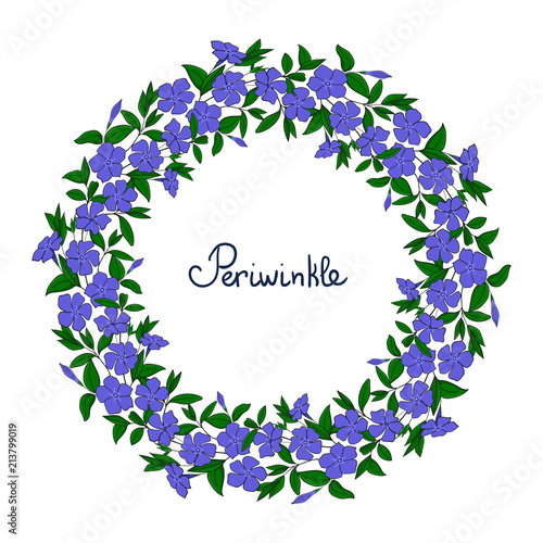 Photo Garland with blue periwinkle flowers