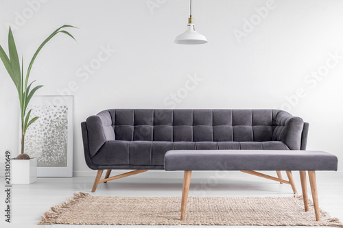 Obraz na płótnie Comfortable upholstered bench on a beige rug and a large, velvet sofa in a bright, white living room interior with a plant