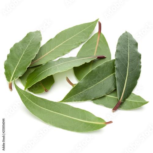 Deurstickers Aromatische Aromatic bay leaves