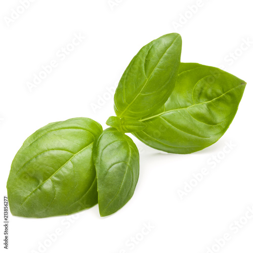 Deurstickers Aromatische Sweet basil herb leaves isolated on white background closeup