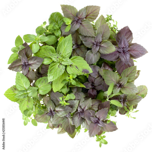 Deurstickers Aromatische Fresh spices and herbs bouquet isolated on white background cutout. Sweet basil, red basil leaves, marjoram and thyme bunch. Top view.