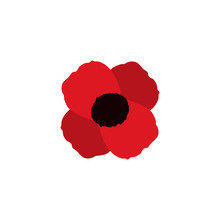 Poppy Vector Flower Memorial Symbol World War Icon