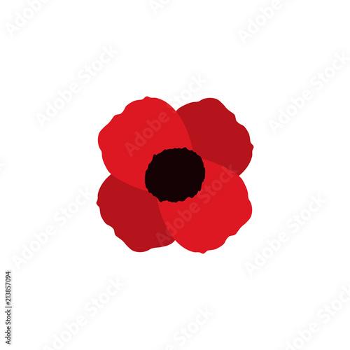 Obraz poppy vector flower memorial symbol world war icon - fototapety do salonu
