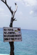 No Diving Or Jumping Sign