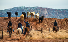 Ranchers Herding Cattle, South...