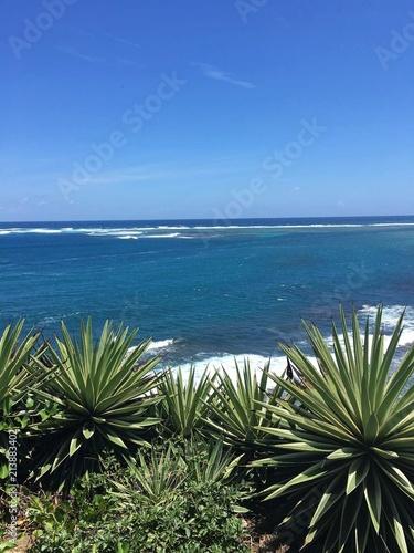In de dag Mexico beach sea shore landscape foliage gardens on tropical island
